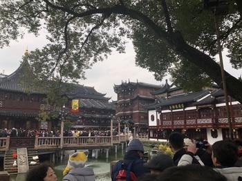 豫園の外(お茶屋さん).JPG
